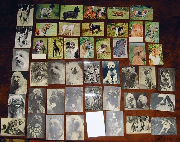 Наборы открыток. Фото 8.