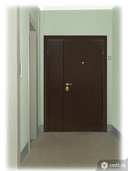 металлическая дверь тамбур